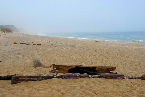 Poster featuring the photograph Cape Cod by AnnaJanessa PhotoArt