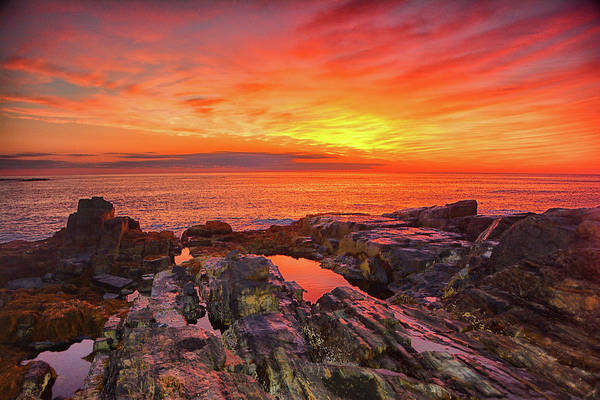 Cape Neddick Sunrise Poster
