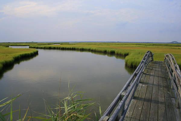 Captree Wetlands Foot Bridge Poster