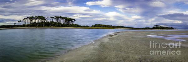 Carolina Inlet At Low Tide Poster