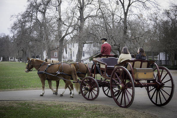Carriage Ride In Williamsburg Poster