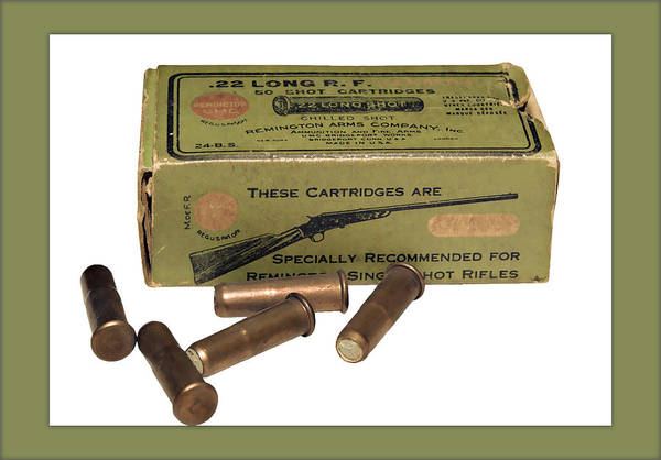 Cartridges For Rifle Poster