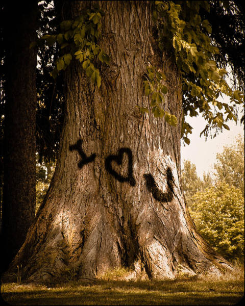 Carve I Love You In That Big White Oak Poster