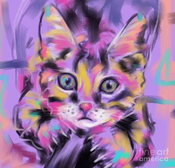 Cat Wild Thing Poster