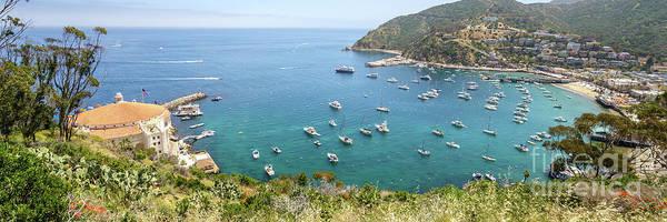 Catalina Island Avalon Harbor Panorama Photo Poster