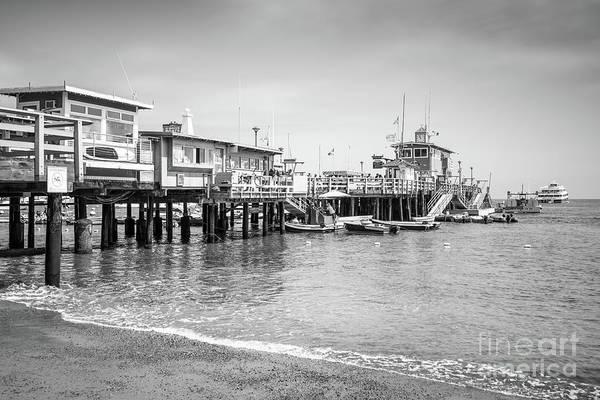 Catalina Island Green Pleasure Pier Black And White Photo Poster