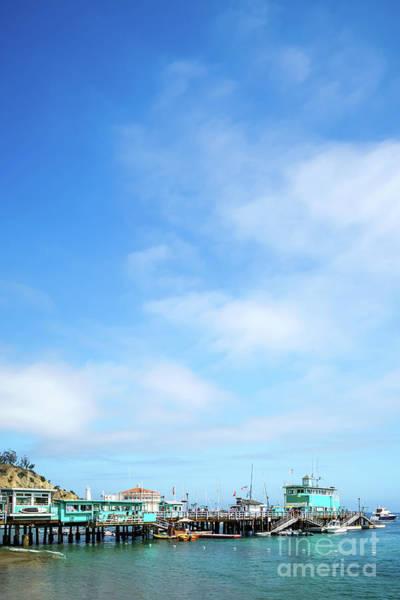 Catalina Island Green Pleasure Pier Photo Poster