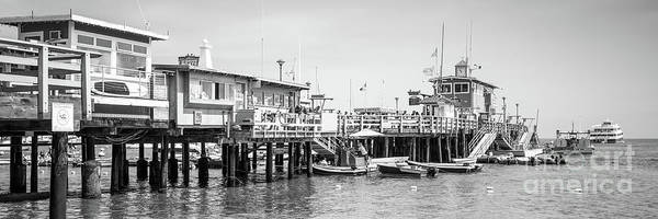 Catalina Island Pier Black And White Panoramic Photo Poster