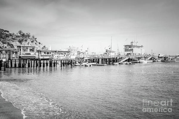 Catalina Island Pleasure Pier Black And White Photo Poster