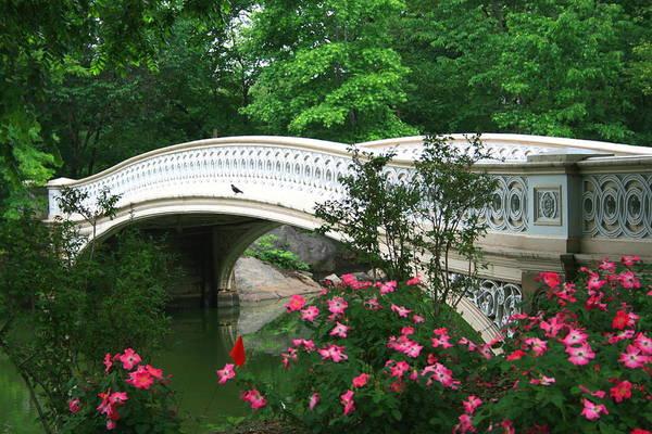 Central Park Bow Bridge In Spring Poster