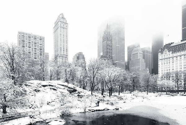 Poster featuring the photograph Central Park by Mihai Andritoiu