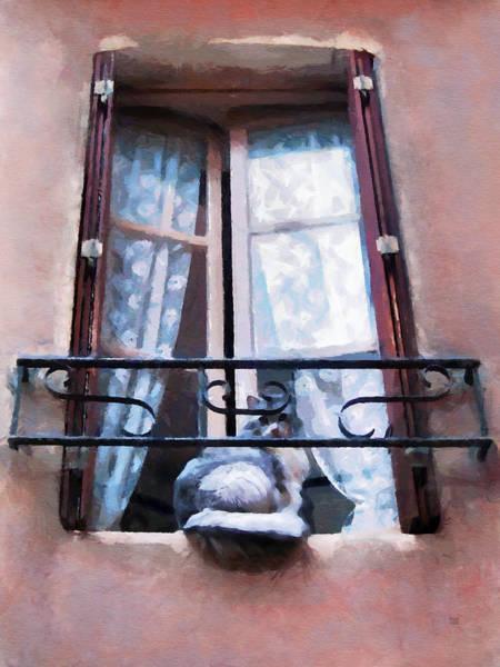 Chat Bleu Dans La Fenetre Rose Poster
