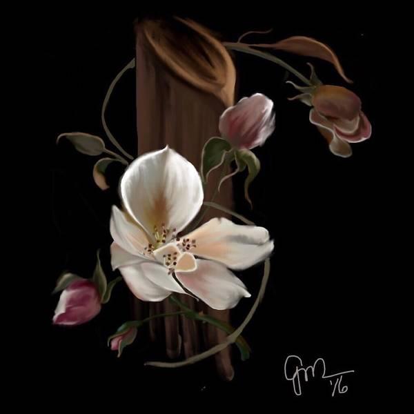 Cherokee Rose Poster