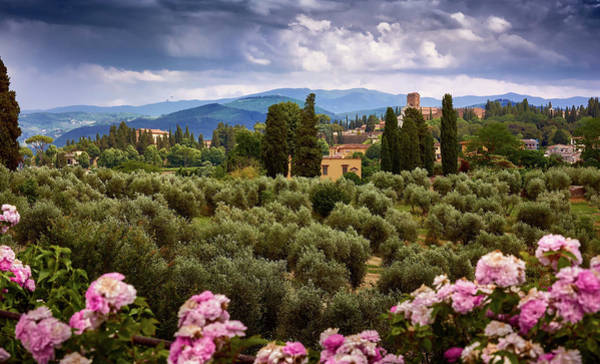 Tuscan Landscape With Roses And Mountains In Florence, Italy Poster