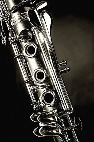 Clarinet Isolated In Black And White Poster