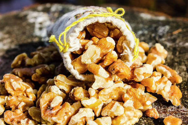 Closeup Of Walnuts Spilling From Small Bag Poster
