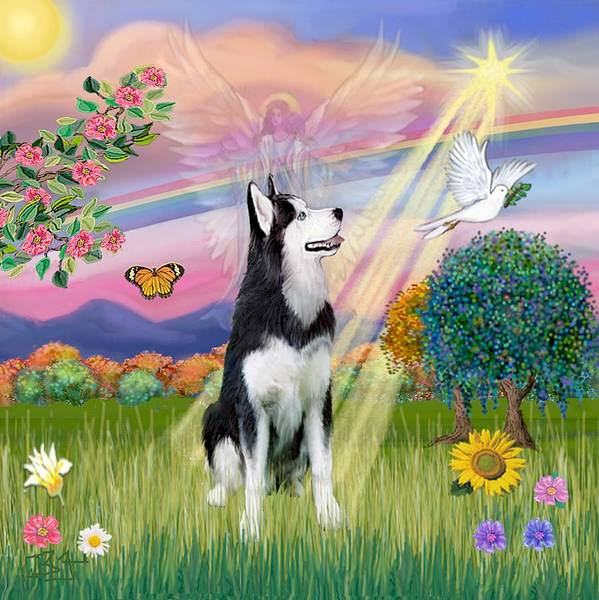 Cloudangel #1 - Siberian Husky Poster