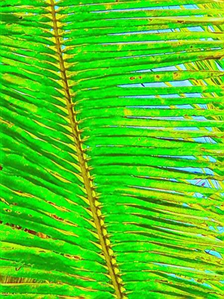 Coconut Palm Leaf Aloha Poster