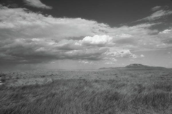 Colorado Grassland Poster