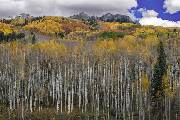 Colorado Splendor Poster