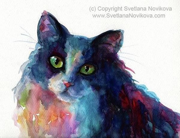Colorful Watercolor Cat By Svetlana Poster