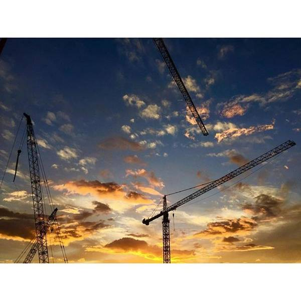 Construction Cranes At Sunset Poster