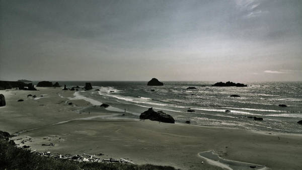 Coquille Point Iv Poster
