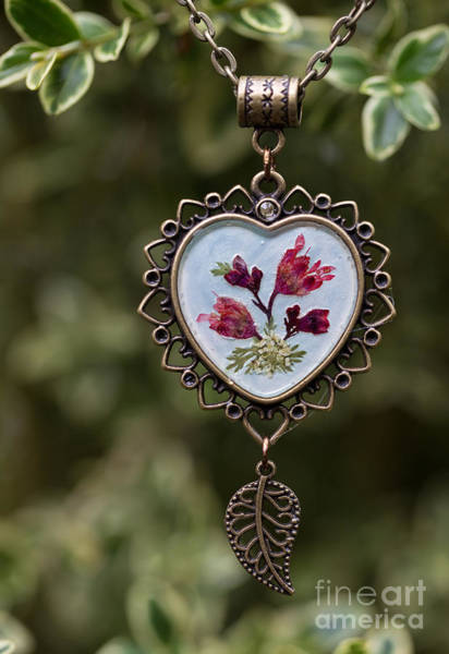 Coral Bell Pressed Flower Pendant Poster
