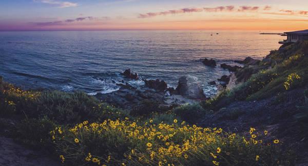 Corona Del Mar Super Bloom Poster