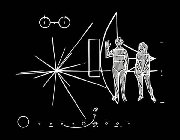 Cosmos Greetings  Poster