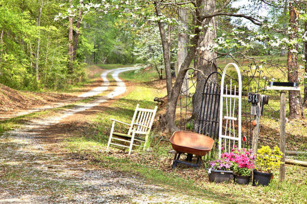 Country Driveway In Springtime Poster