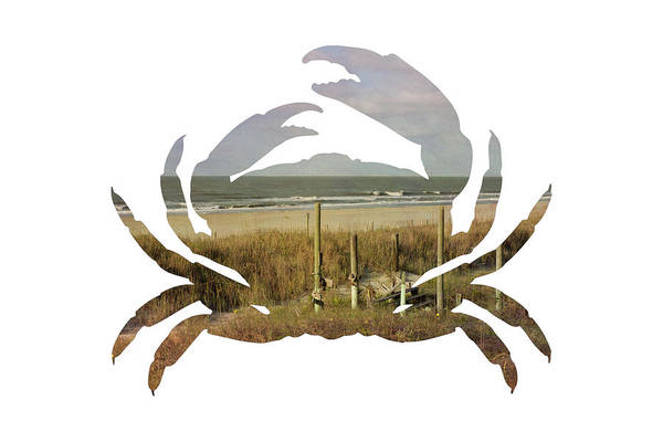 Crab Beach Poster