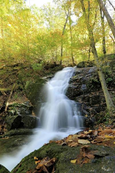Crabtree Falls In The Fall Poster