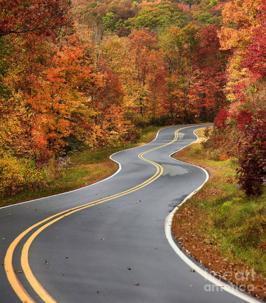 Curvy Road In The Mountains Poster