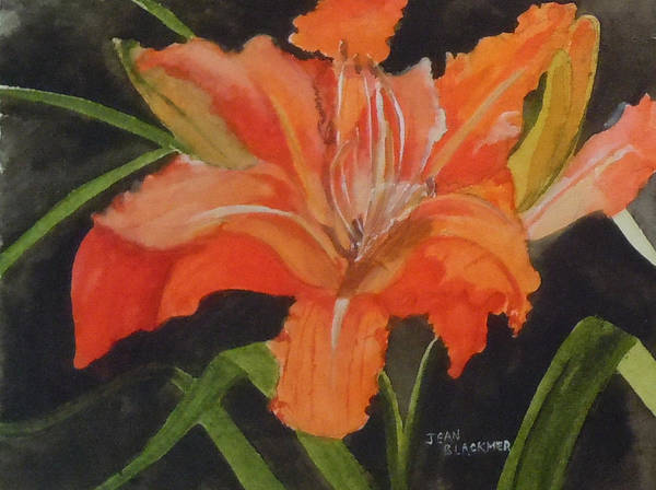 Poster featuring the painting Daylily Study IIi by Jean Blackmer