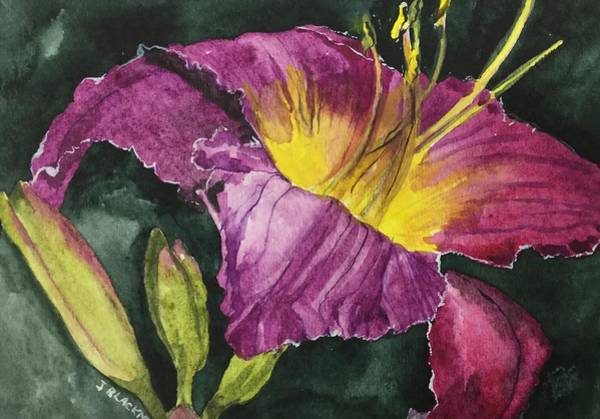 Poster featuring the painting Daylily Study Vi by Jean Blackmer