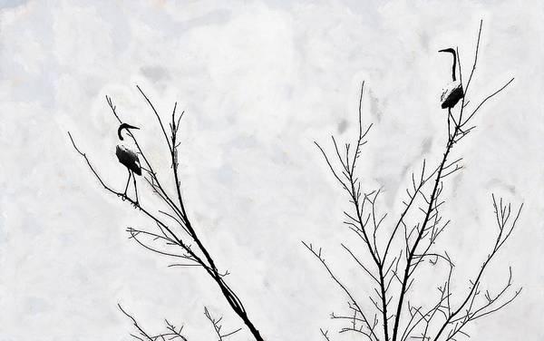 Dead Creek Cranes Poster