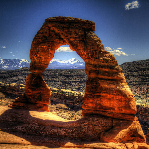 Delicate Arch Framing La Sal Mountains Poster