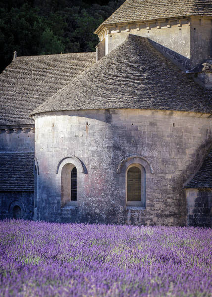 Detail Of Abbaye Senanque, Church In Provence, Southern France, Surrounded By Lavender Poster