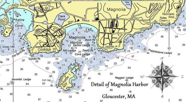 Detail Of Magnolia Harbor Poster