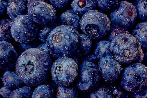 Dew Covered Blueberries Poster