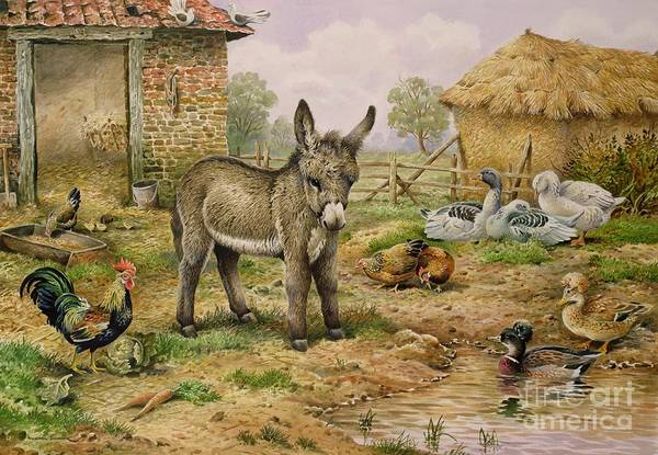 Donkey And Farmyard Fowl  Poster