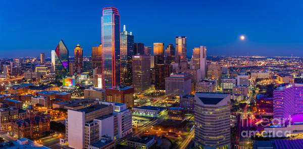 Downtown Dallas Panorama Poster