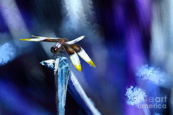 Dragonfly In The Blue Poster