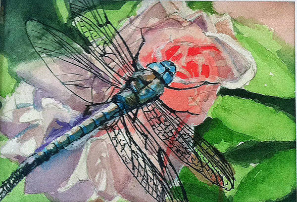 Dragonfly On Rose Poster