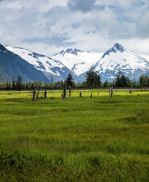 Dramatic Mountains Over A Meadow Poster