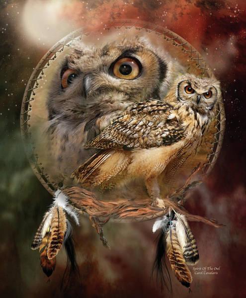 Dream Catcher - Spirit Of The Owl Poster