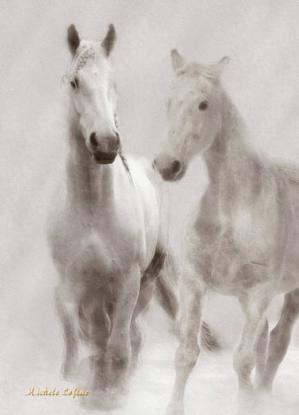 Dreamy Horses Poster