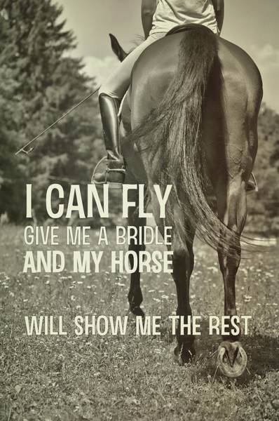 Dressage In The Daisies Quote Poster