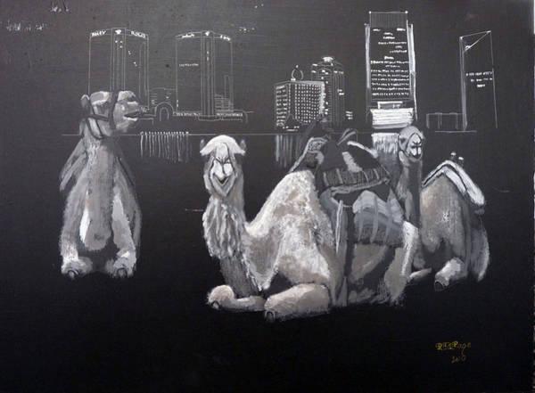 Dubai Camels Poster